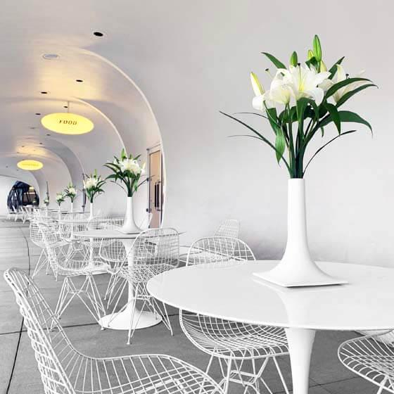 white ceramic flower vases